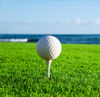 Golf & Turf Use Photo